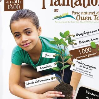 Opération plantation