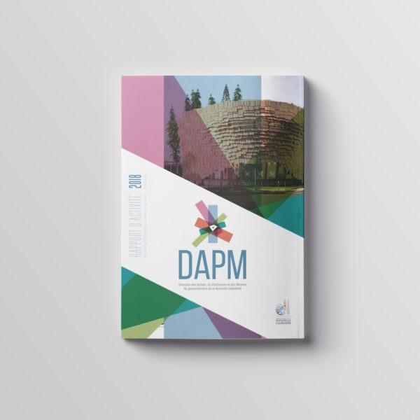 Rapport d'activité DAPM